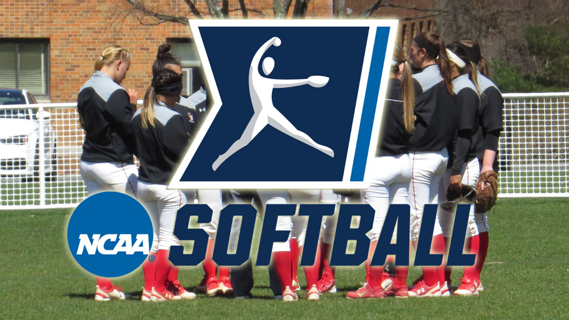 Softball Ranks #10 in Second NCAA Division II East Region Poll